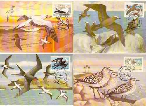 Fauna Marinha-pássaros-4 Maximos Postais-serie 1461/4 -
