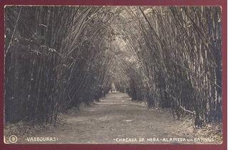 Cartão Postal Vassouras Chacara Da Hera Est. Rio De Janeiro