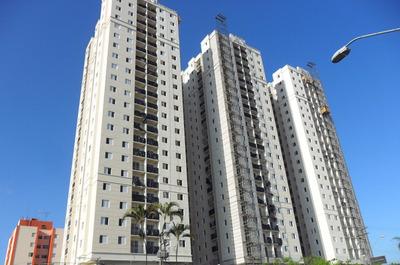 Apartamento Novo, Pronto Para Morar,entregue!!!