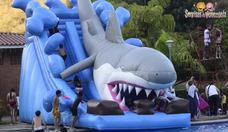 Inflables Para Piscinas Y Tirolina Para Fiestas Infantiles