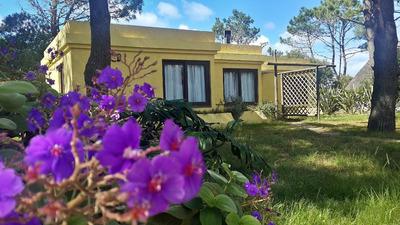 Casa Uruguay La Paloma Alquilo Particular La Amarilla