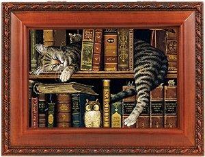 Sleeping Cat En La Biblioteca De La Caja De Música De Madera