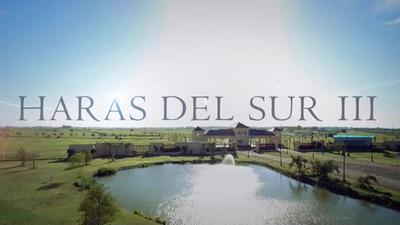 Terreno En Haras Del Sur Iii (lote 172 - Barrio Los Alamos)