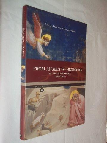 * Livro - From Angelis To Neurones - Psicologia