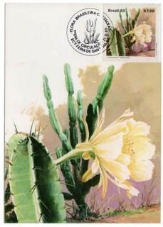 3 Maximo Postal 82/84 Flora Brasileira