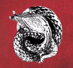 Anel Da Sagrada Cobra De Bali - Prateado