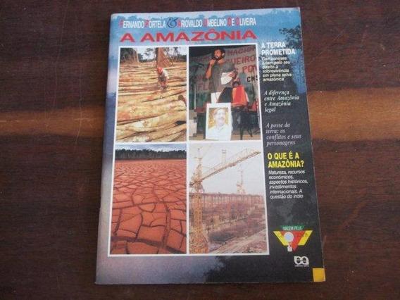A Amazônia - O Que É A Amazônia - Geografia - Didatico