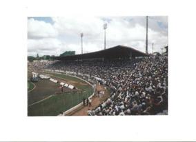 Foto Postal Estádio Alfredo Castilho Bauru Tamanho 15x20 Cm