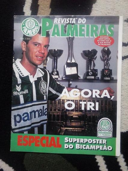 Palmeiras Poster Bi Campeão 1993/94 56x88