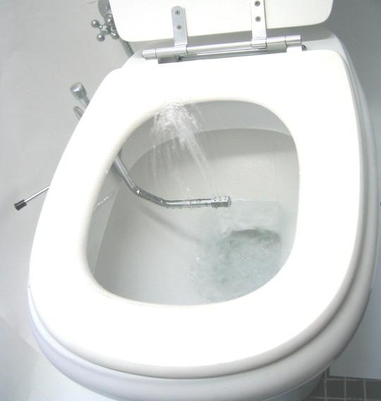 Ducha Higiênica Metal Biducha Bidê No Vaso Sanitário