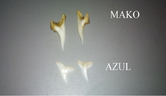 Dentes Tubarão Para Artesanato,brincos Ou Colares