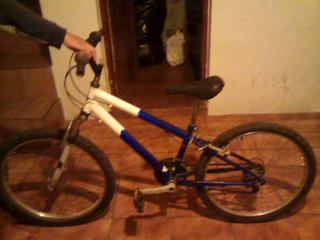 Bicicleta Gallo 21 Marchas