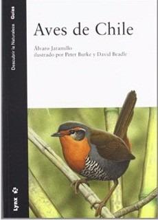 Aves De Chile Jaramillo