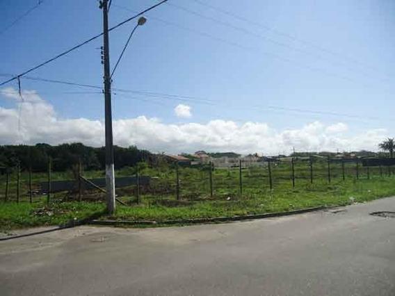 Excelente Área A 500 Metros Da Praia 6.850 M² - Ref: 255