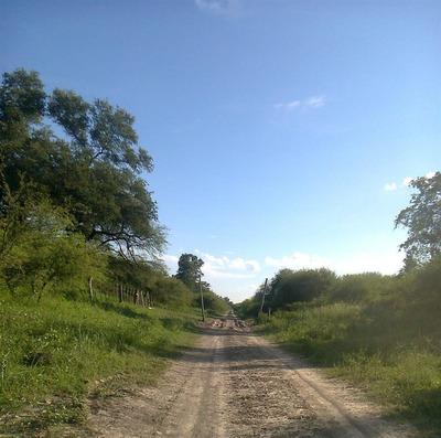 Campo Mixto De 5150 Has Sobre Ruta En Formosa.