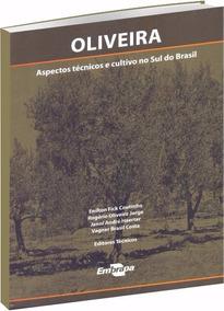 Oliveira: Aspectos Técnicos E Cultivo No Sul Do Brasil