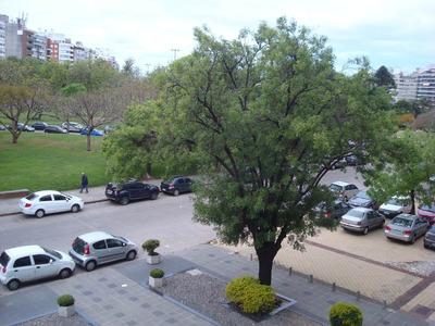 Apartamento Villa Biarritz 4 Dormitorios 4 Baños Garaje