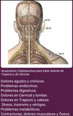 Acupuntura-ventosas-auriculoterapia-masaje Tuina A Domicilio