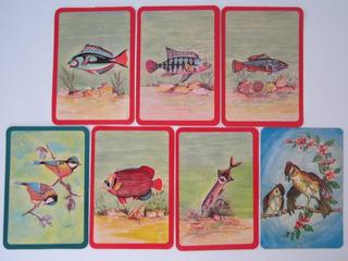 7 Calendários De Bolso Estrangeiros Antigos Fauna