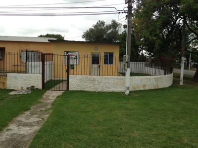Casa En Alquiler En Colón