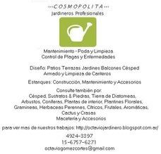 Servicio De Jardinería Jardinero Profesional A Domicilio.