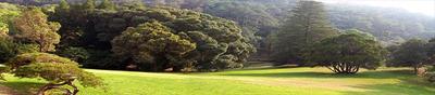 Ref.: 2914 - Terreno Em Cotia, No Bairro Altos De Caucaia (caucaia Do Alto)