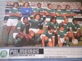 Poster Palmeiras Campeão Brasileiro 1973 21 X 27cm