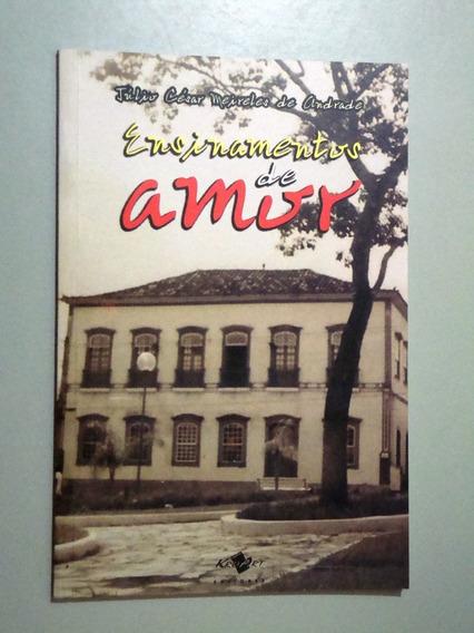 Livro Ensinamentos De Amor - Júlio Cesar Meireles De Andrade