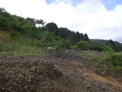 Terreno En Jerico De Desamparados, 1.8 Hectareas