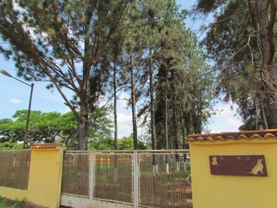 Rb Venta Hotel Para Canes Con Instalaciones En Optimo Estado