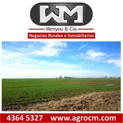 Vende Campo 620ha Flores, Agricola, Estancia,chacra,r 14,r 3