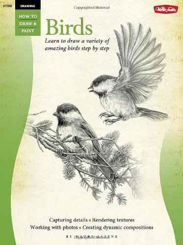 Dibujo: Aves: Aprende A Dibujar Una Variedad De Aves Sorpren