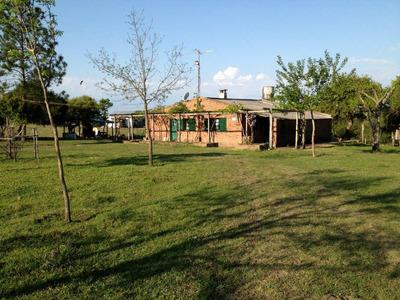 Hospedaje Alojamiento Alquiler Casa Salto