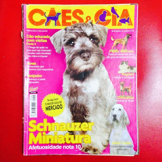 Cães E Cia - Schnauzer Miniatura