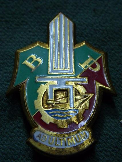 Legion Extranjera - Francia - Insignia - Nº8
