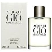 Perfume Acqua Di Gio Armani Edt 100ml 100% Original Imp Usa