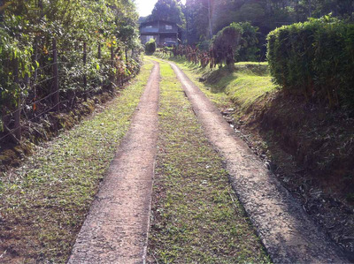En Venta En El Guarco Kilometro 31