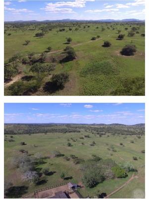 Espetacular Fazenda Em Feira De Santana, Pronta Para Criação Agropecuária!!! - Fa00004