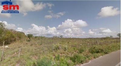 Terreno Para Inversion En Venta Tizimin Yucatan