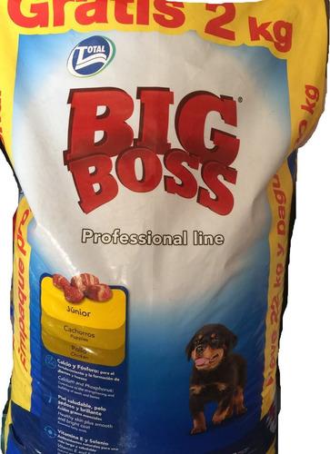 Big Boss Cachorro 20 + 2 Kg Gratis + 6 Pagos