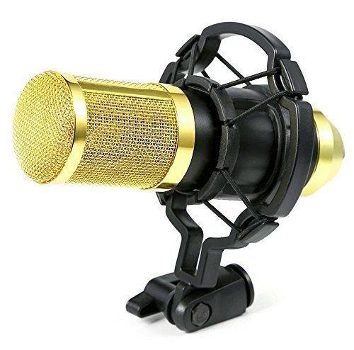 Microfono Ohuhu Audio Studio Condensador Pro