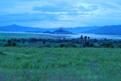 Terreno Planoen Patzcuaro Con/espectacular Vista A Janitzio