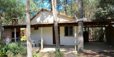 Casa Céntrica En El Bosque, La Siesta