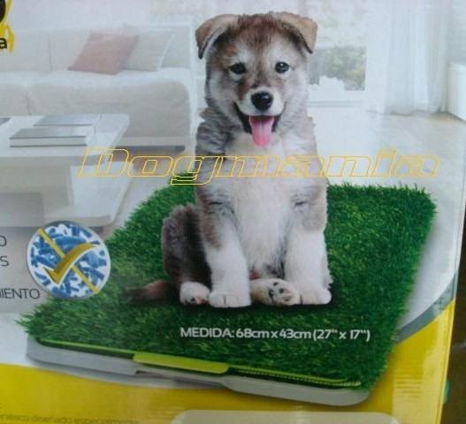 Tapete Entrenador Doggie Grass 68x43 + Repuesto