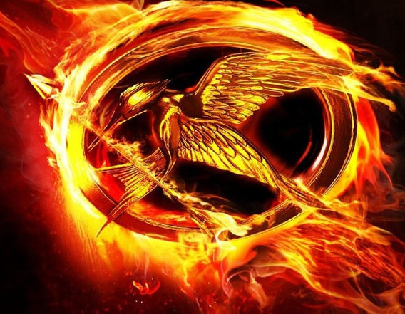 Colar Jogos Vorazes (tordo) Hunger Games - Frete Grátis ! !