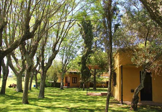 Chacras Del Arroyo! Alquiler Quinta A Una Hora De Capital