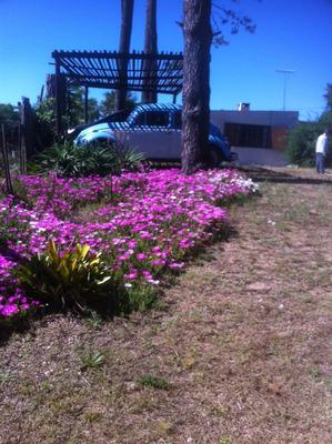 Casa Parque Del Plata