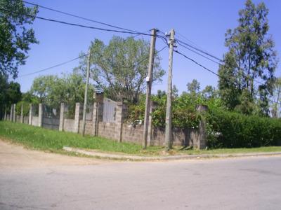 Pinar Sobre Ruta Acera Sur 3 Casas Y Mas Oportunidad!!!