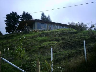 Vencambio Casa Finca Vereda Yolombo-san Cristobal-medelllin