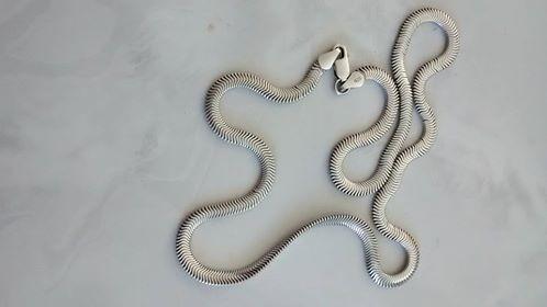 Cordão De Prata Novo-925